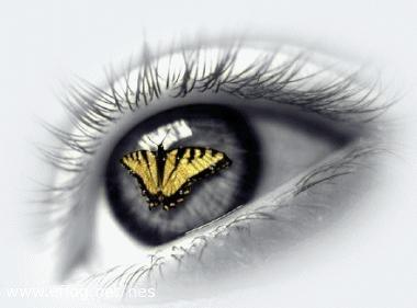 """Obrázek """"http://altair.websnadno.cz/oko.jpg"""" nelze zobrazit, protože obsahuje chyby."""